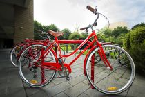 Example of Bikeshare bike
