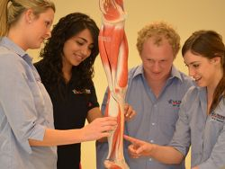 Podiatry students studying the form of a human leg.