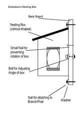 Kookaburra-Nesting-Box