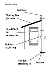 Owl-Nesting-Box
