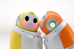 Image of RECCSI robots