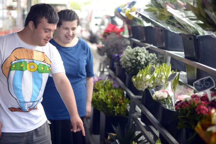 Two people pointing to a stand of flowers.