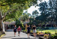 Image of four students walking at the Bundoora campus