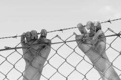 Hands behind barb wire fence