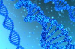 latrobe.edu.au - La Trobe University - Genomics Platform